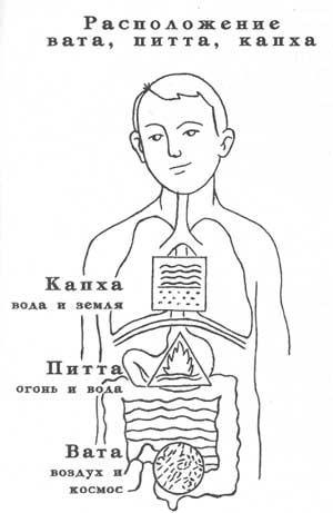 *** Доши и Тантра-Аюрведа — древнейшая система здоровья, счастья и долголетия ***